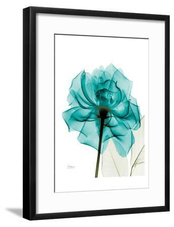 Teal Spirit Rose-Albert Koetsier-Framed Art Print