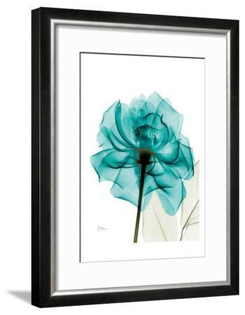 Teal Spirit Rose-Albert Koetsier-Framed Art Print