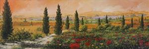 Il Viale dei Cipressi by Tebo Marzari