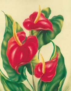 Anthurium II, Red Hawaiian Tropical Flowers by Ted Mundorff