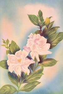 Hawaiian Gardenia (Nanu) by Ted Mundorff