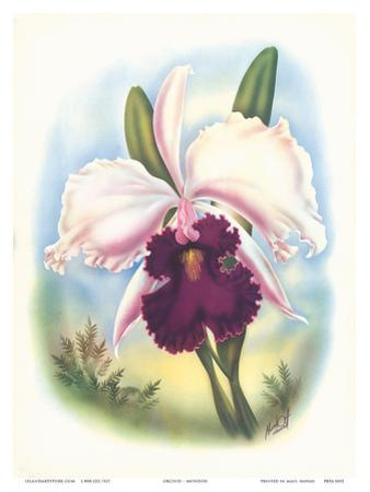 Hawaiian Orchid, Airbrush, c.1940s by Ted Mundorff