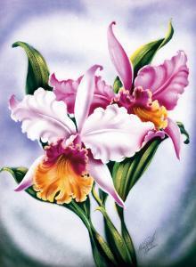 Hawaiian Pink Orchid, c.1940s by Ted Mundorff