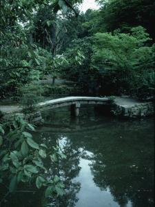 Old Stone Bridge in Garden by Ted Thai