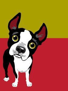 Boston Terrier Dog by TeddyandMia