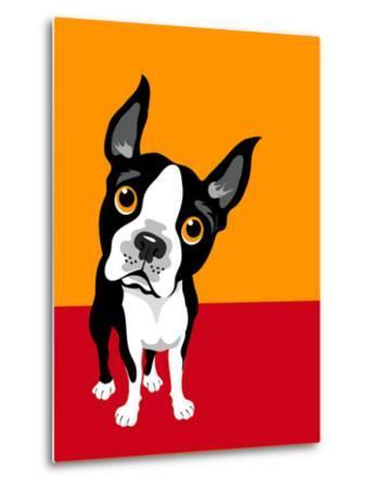 Illustration of a Boston Terrier Dog