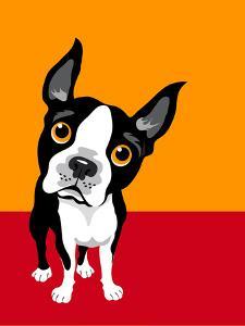 Illustration of a Boston Terrier Dog by TeddyandMia