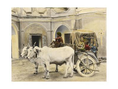 Teenage Girls Smile and Wave Out of a Canopied Wagon Drawn by Oxen-Franklin Price Knott-Photographic Print