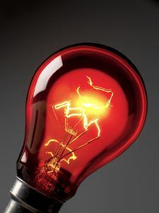 Electric Lightbulb by Tek Image