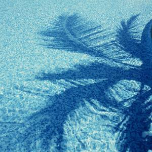 Water Ripples by Tek Image
