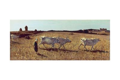 Pastures in Castiglioncello, 1861