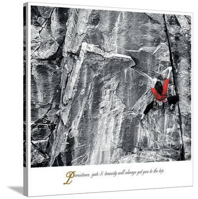 Tenacity--Stretched Canvas Print