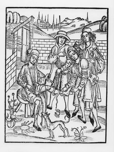 Tending a Snake Bite, from 'Das Buch Der Cirugia', 1497-Hieronymus Brunschwig-Giclee Print