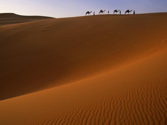 Tenere Desert, Camel Caravan Travelling Through the Air Mountains and Tenere Desert, Niger-Paul Harris-Photographic Print