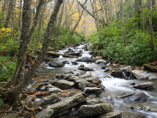 Tennessee, Great Smoky Mountains National Park, Alum Cave Creek-Jamie & Judy Wild-Photographic Print