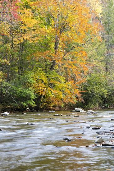 Tennessee, Great Smoky Mountains National Park, Little River-Jamie & Judy Wild-Photographic Print