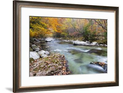Tennessee, Great Smoky Mountains National Park, Little River-Jamie & Judy Wild-Framed Photographic Print