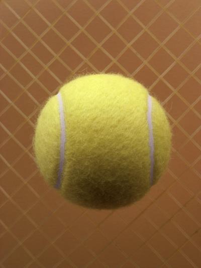 Tennis Ball Against a Racquet--Photographic Print