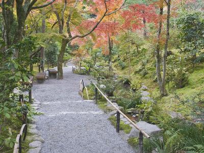 Tenryuji Temple Garden, Sagano, Arashiyama, Kyoto, Japan-Rob Tilley-Photographic Print