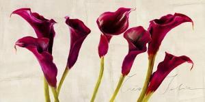 Tres Jolie by Teo Rizzardi