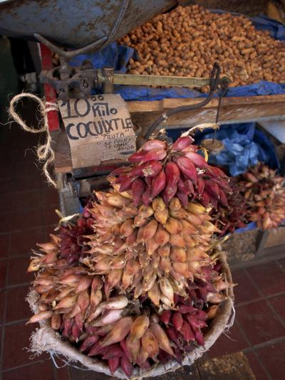 Tequila Fruit for Sale on a Stall in Mexico, North America-Michelle Garrett-Photographic Print