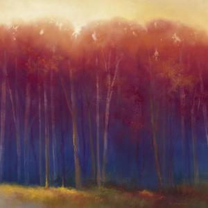 Deep Woods in Autumn by Teri Jonas