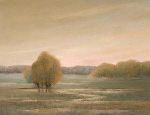 Marshy Fields by Teri Jonas