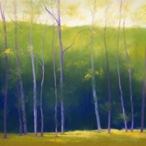 Summer Leaves by Teri Jonas