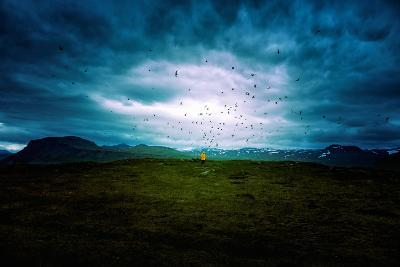 Tern Study Area, North Iceland Birds and Sky Drama-Vincent James-Photographic Print