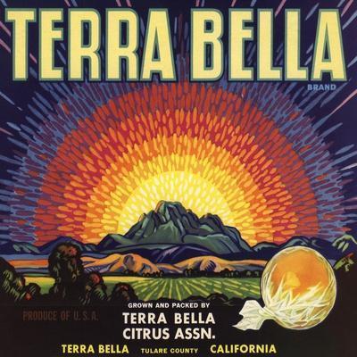 https://imgc.artprintimages.com/img/print/terra-bella-brand-terra-bella-california-citrus-crate-label_u-l-q1grd0s0.jpg?p=0