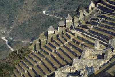 Terraces, Machu Picchu--Photographic Print