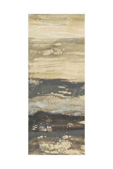 Terre Umber I-Jennifer Goldberger-Premium Giclee Print