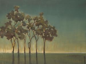 Arbor Grove by Terri Burris