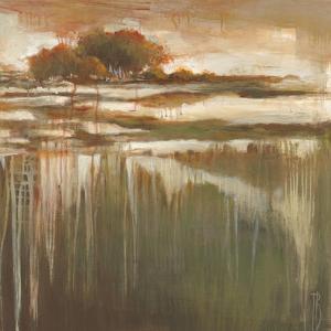Cambria Fields I by Terri Burris