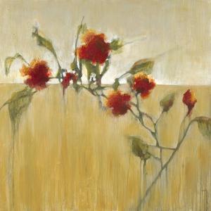 Hibiscus Blooms by Terri Burris