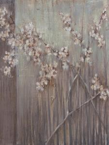 Spring Blossoms by Terri Burris