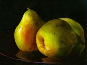 Three Pears by Terri Hill