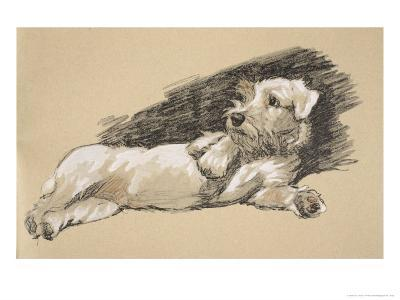 Terrier Detail, 1930, Just Among Friends, Aldin, Cecil Charles Windsor-Cecil Aldin-Giclee Print