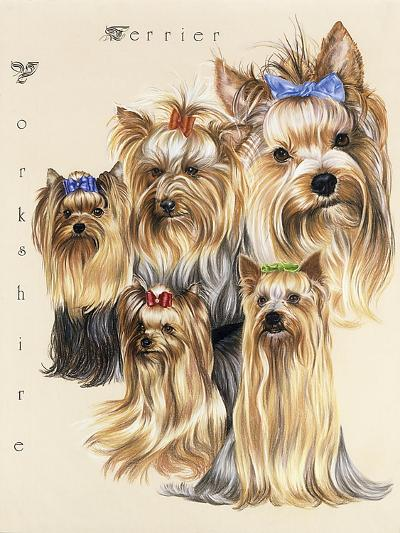 Terrier-Barbara Keith-Giclee Print