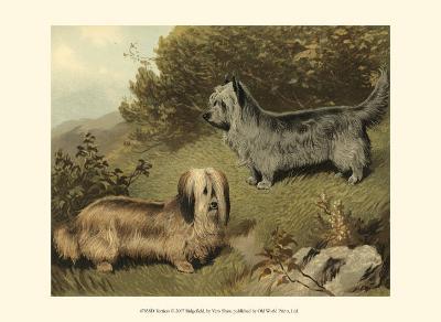 Terriers-Vero Shaw-Art Print