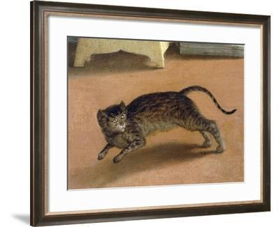 Terrified Cat, Detail from Recanati Annunciation, Ca 1534-Lorenzo Lotto-Framed Giclee Print