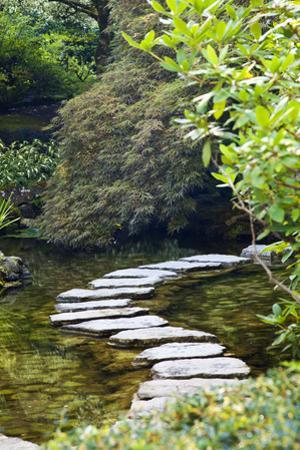 Autumn Color, Stepping Stones, Butchard Gardens, Victoria, British Columbia, Canada by Terry Eggers