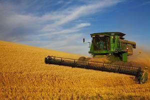Combine Harvesting Wheat, Palouse Country, Washington, USA by Terry Eggers