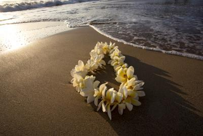 Hawaii, Maui, Lie on Kihei Beach with Reflections in Sand by Terry Eggers