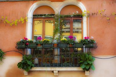Italy, Venice, Window Boxes with Flowers. by Terry Eggers