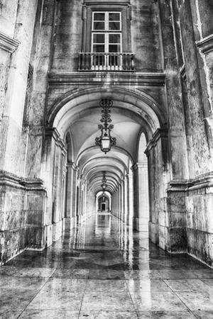 Portugal, Lisbon. Columns of the Arcade of Commerce Square with Reflections by Terry Eggers