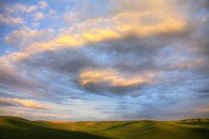 Rolling Hills of Green Spring Wheat and Evening Bright Clouds by Terry Eggers