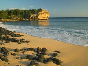 Ship Wreck Beach, Kauai, Hawaii, USA by Terry Eggers