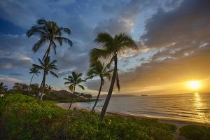 Sunset on Southern Maui Beach with Palm Trees by Terry Eggers