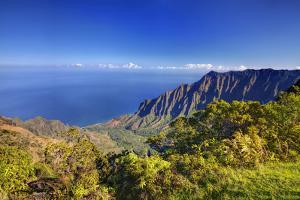 USA, Hawaii, Maui, Canyon Overlook by Terry Eggers